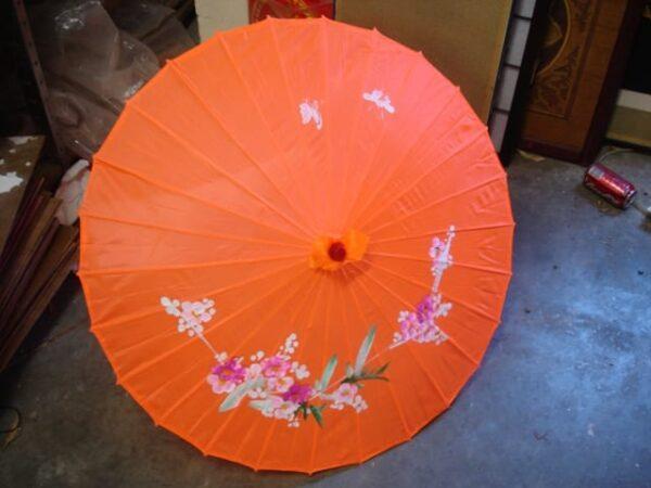 Japanese Umbrella