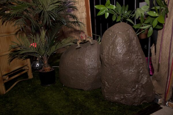 Large Artificial Rocks or Boulders-10987