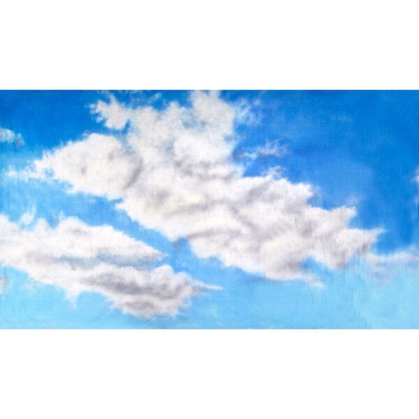 Sky with Clouds Painted Backdrop BD-0001