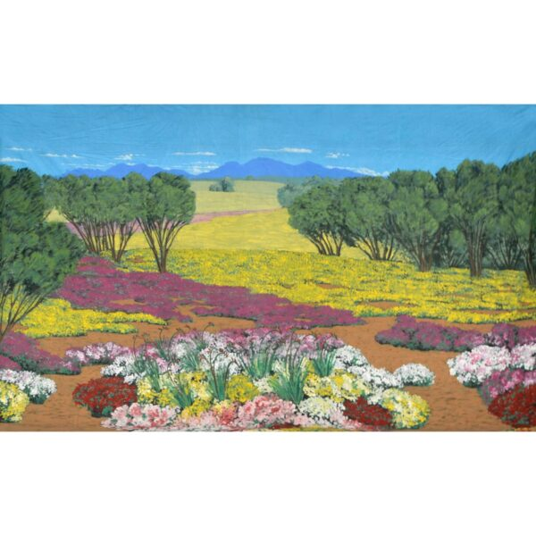 Colourful Wildflowers Painted Backdrop BD-0119