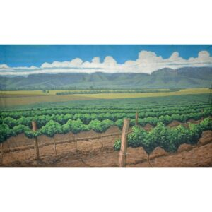 Australian Hunter Valley Vineyard Painted Backdrop BD-0903