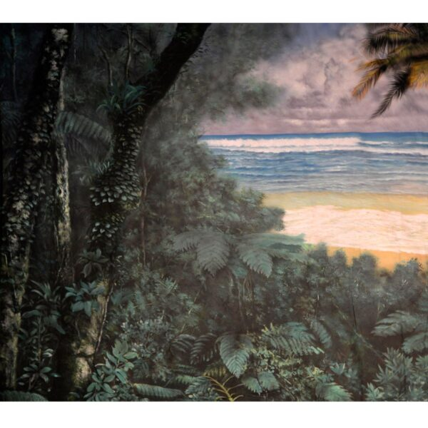 Tropical Beach Painted Backdrop BD-1010