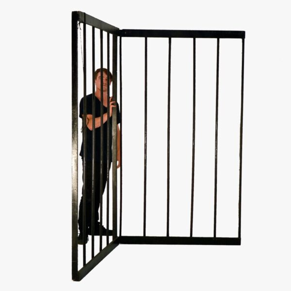 Cage or Jail Bars - 2 Pieces-11398