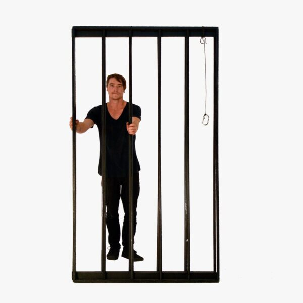 Cage or Jail Bars - 2 Pieces-11399
