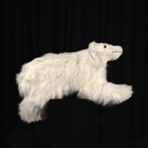 Cutout - Baby Polar Bear with Fur