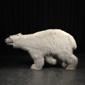 Cutout - Polar Bear with Fur Facing Left