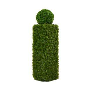 Hedge Column