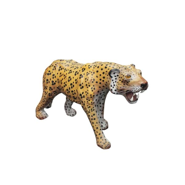 Animal - Leopard-0