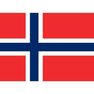 Flag Norway - Medium