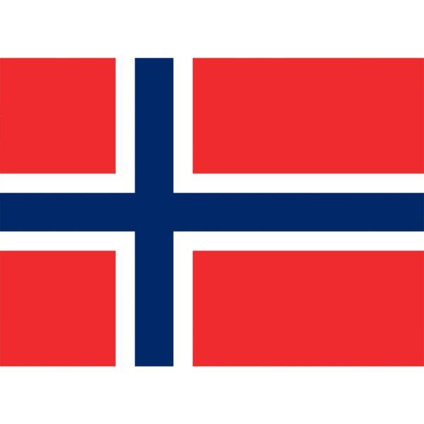 Flag Norway - Large