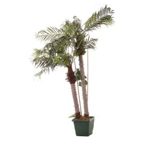 Artificial Potted Date Palm