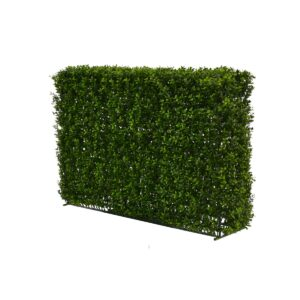 Medium Hedge Wall
