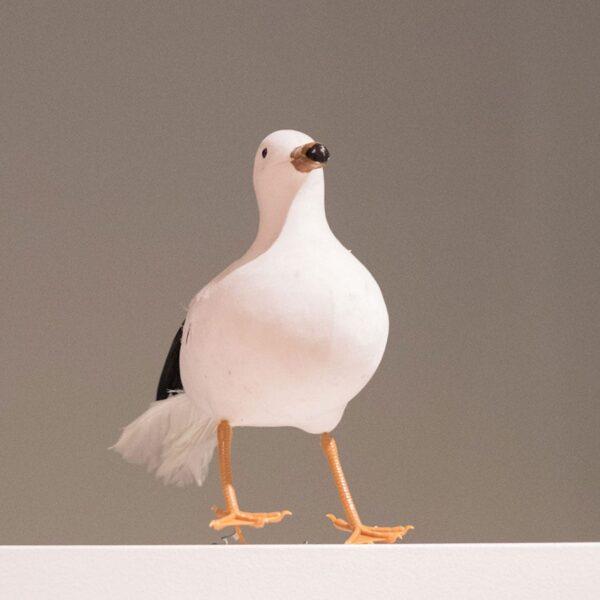 Seagull-0