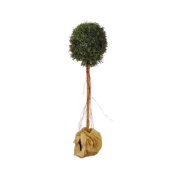 Tall Topiary Tree-0