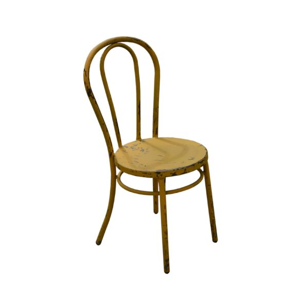 Rustic Painted Steel Bentwood Chair
