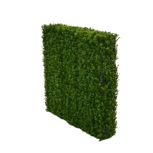 Large Hedge Wall