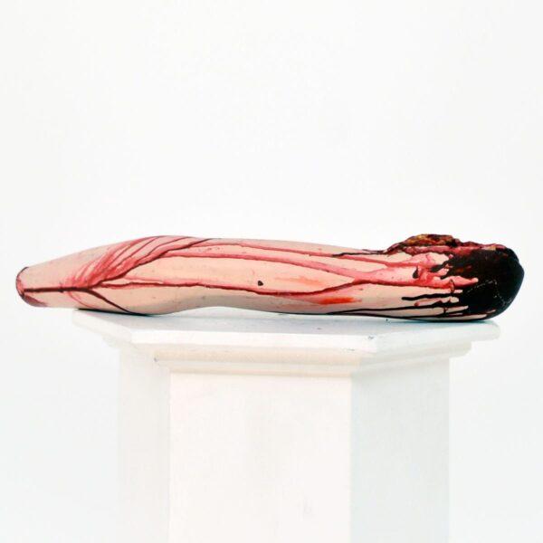 Horror severed limb