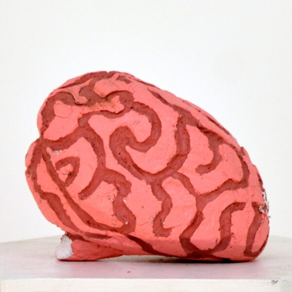 Horror large painted brain