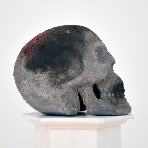 Fake Human Skull