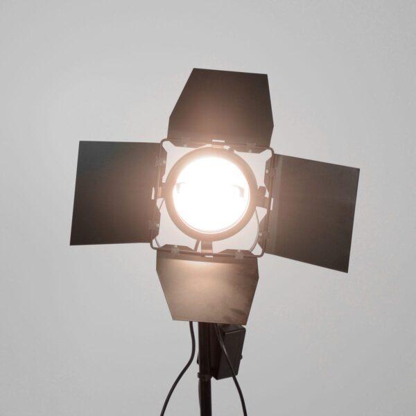 Redhead 800W Studio Light