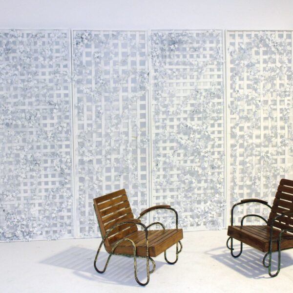 Lattice Flats and Living Wall - winter / minimalist