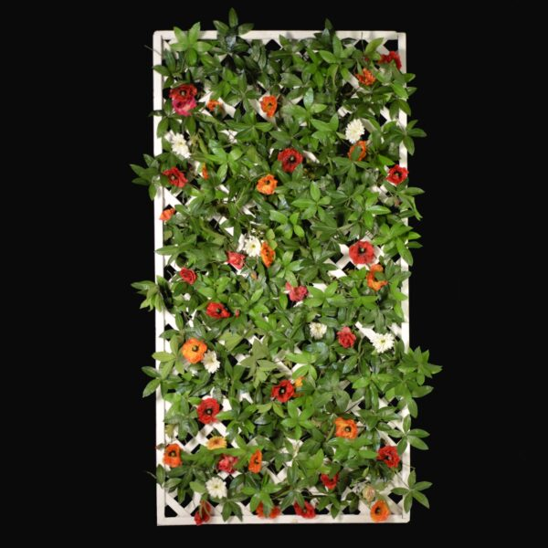 Lattice Flats and Living Wall - ivy and poppies