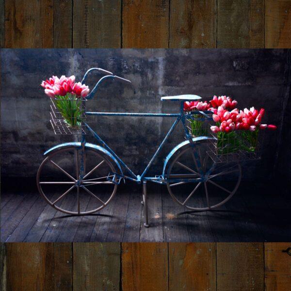 Display Bicycle with Metal Wheels