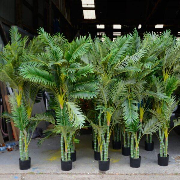 2 x twisted palms PALMTWIS
