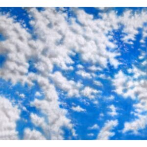 Sky Clouds Painted Backdrop BD-0005
