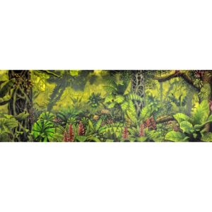 Tropical Jungle Painted Backdrop BD-0083