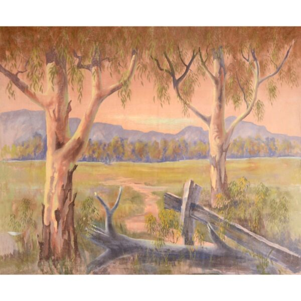 Gum Trees and Fence Painted Backdrop BD-0908