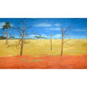 Australian Outback Landscape Painted Backdrop BD-0910
