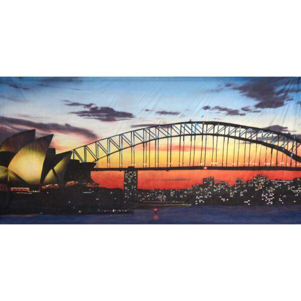 Sydney Harbour Sunset Painted Backdrop BD-0913