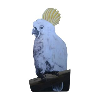 Cutout - Sulphur Crested Cockatoo