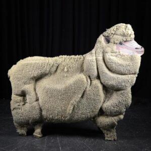 Cutout - Sheep with Wool Facing Right
