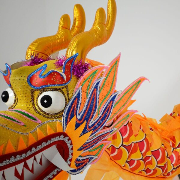 Medium Chinese Dance Dragon-18252