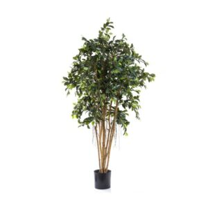 Artificial Ficus Tree-0