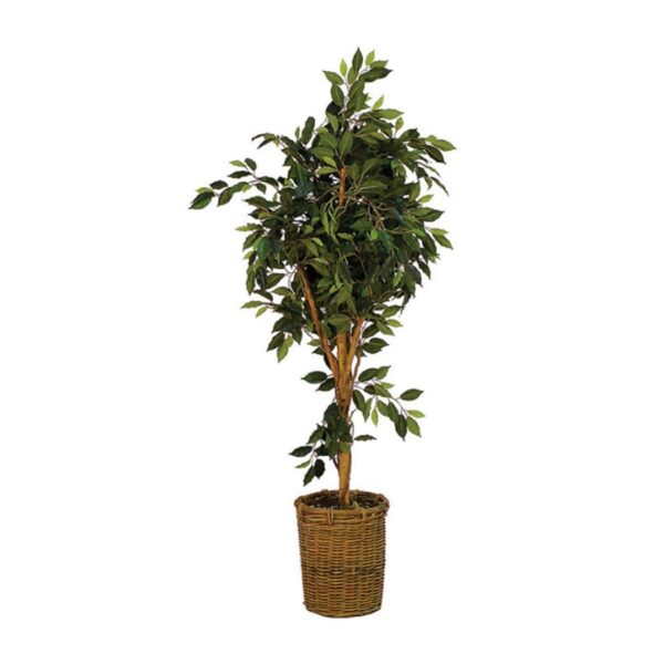 Artificial Ficus Tree-18524