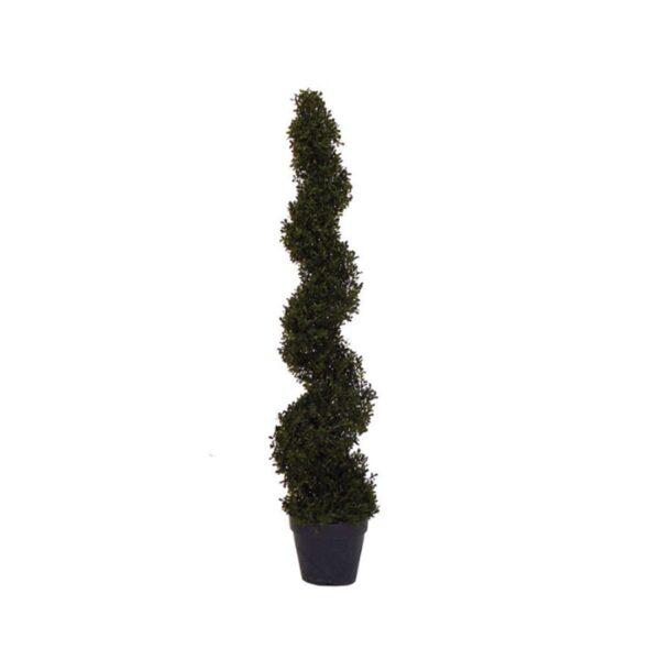 Spiral Hedge-0