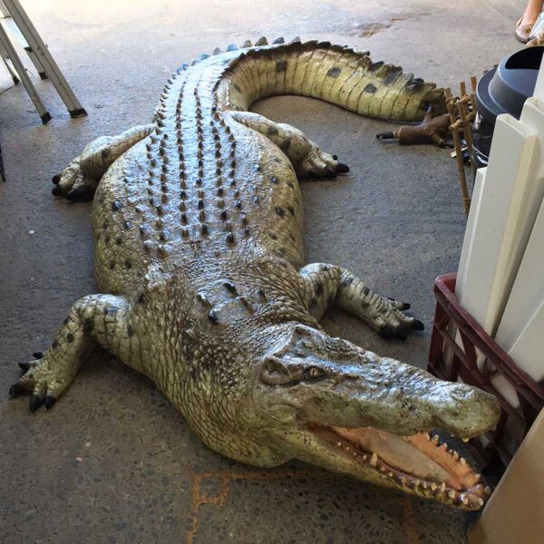 Life Size Crocodile-18605