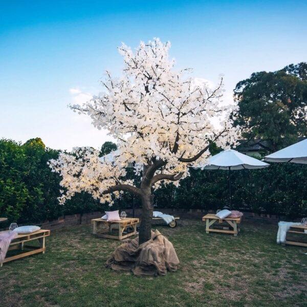 Large Illuminated White Tree-19190