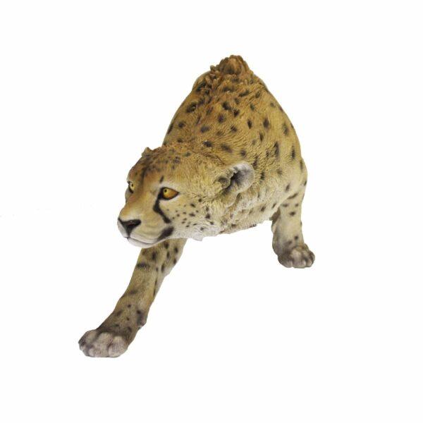 Cheetah -19096