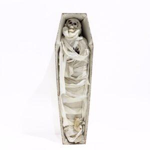 Mummy in Coffin-0
