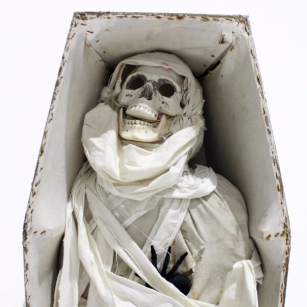 Mummy in Coffin-19044