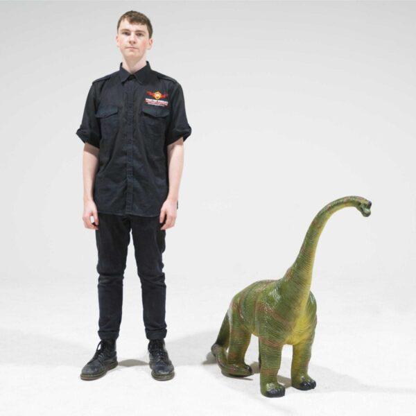 Brachiosaurus Dinosaur Statue - Small -19417
