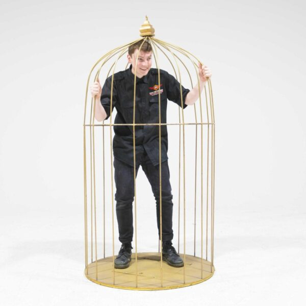 Giant Gold Birdcage-19487