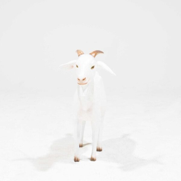 Life-Size Cream Goat Statue-19344