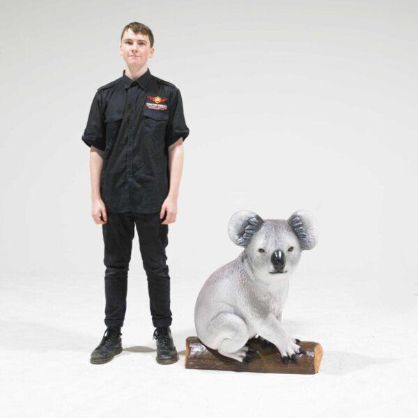 Life-Size Koala Bear Statue on branch-19336