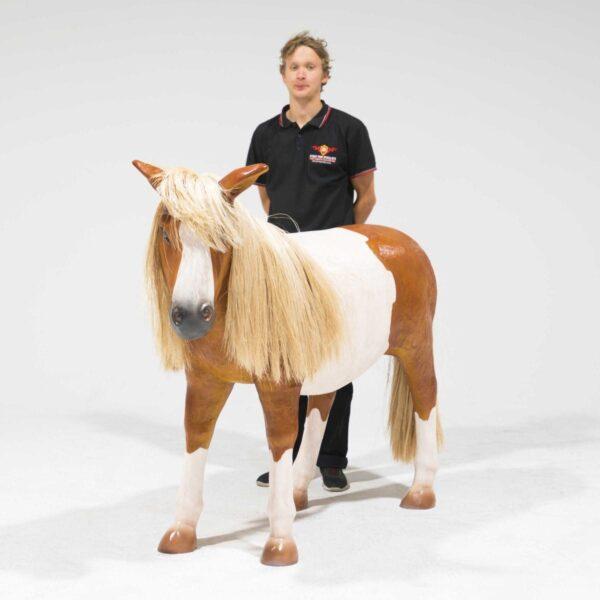 Life-Size Shetland Pony Statue-19322