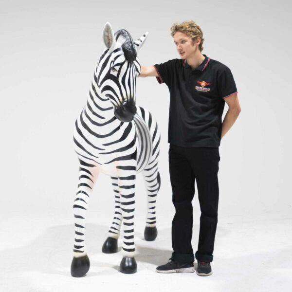 Life-Size Zebra Fibreglass-19253